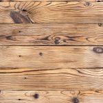 Verschil tussen boktor en houtworm