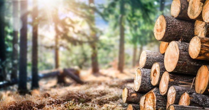 balken vurenhout